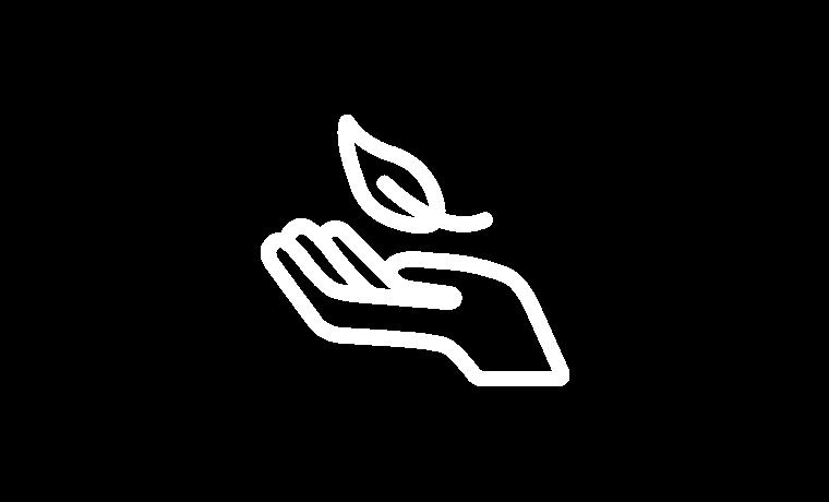 Icon Verantwortung transparent